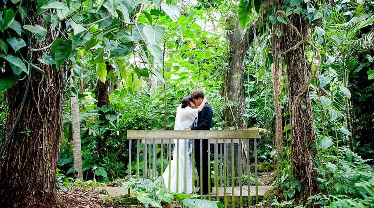 10 Inspirational Botanic Gardens   Fairchild Tropical Botanic Gardens, Miami, Florida, USA