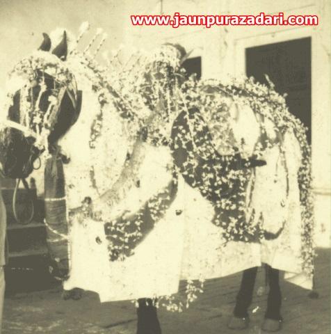 ज़ुल्जिनाह पानदरीबा jaunpur