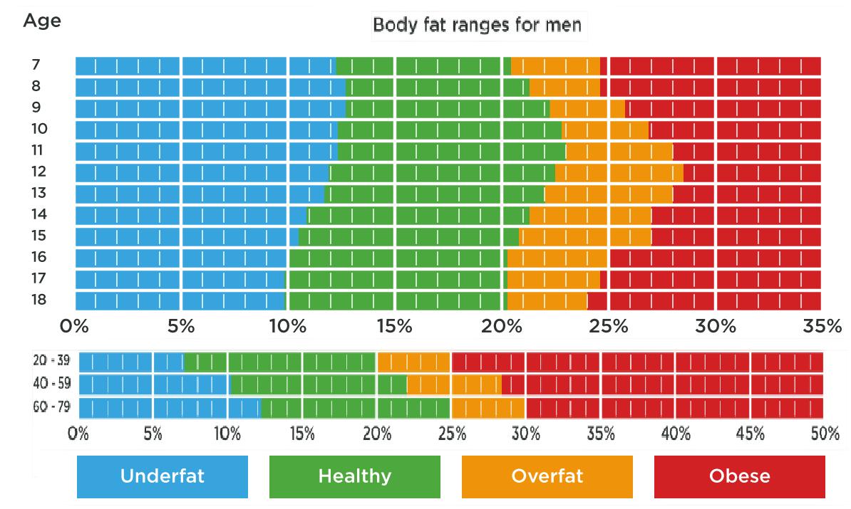 porcentaje de grasa corporal adecuado mujeres