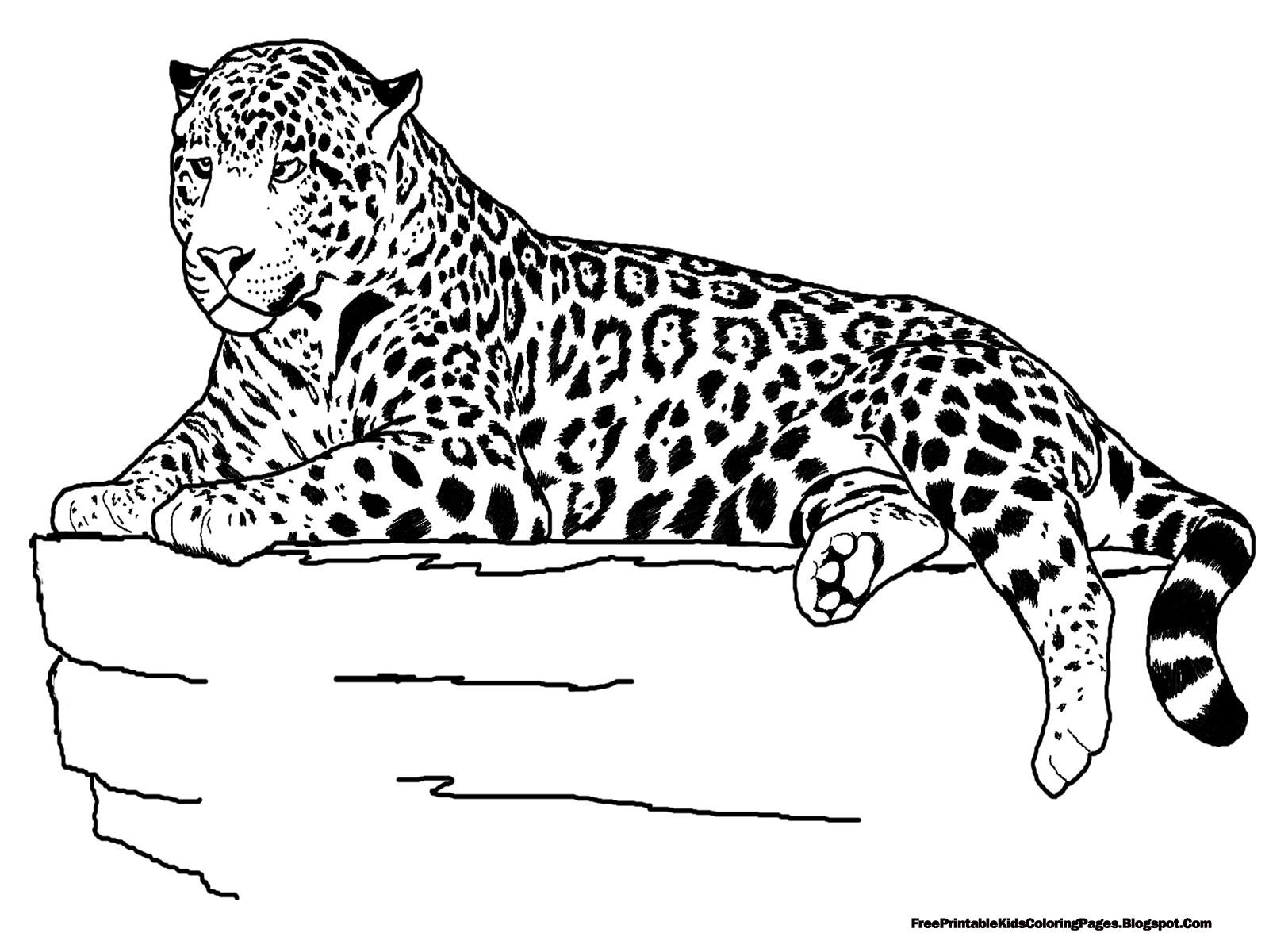 Jaguar Laying Coloring Pages - Free Printable Kids ...