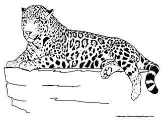 Jaguar Laying On The Rock Coloring Pages