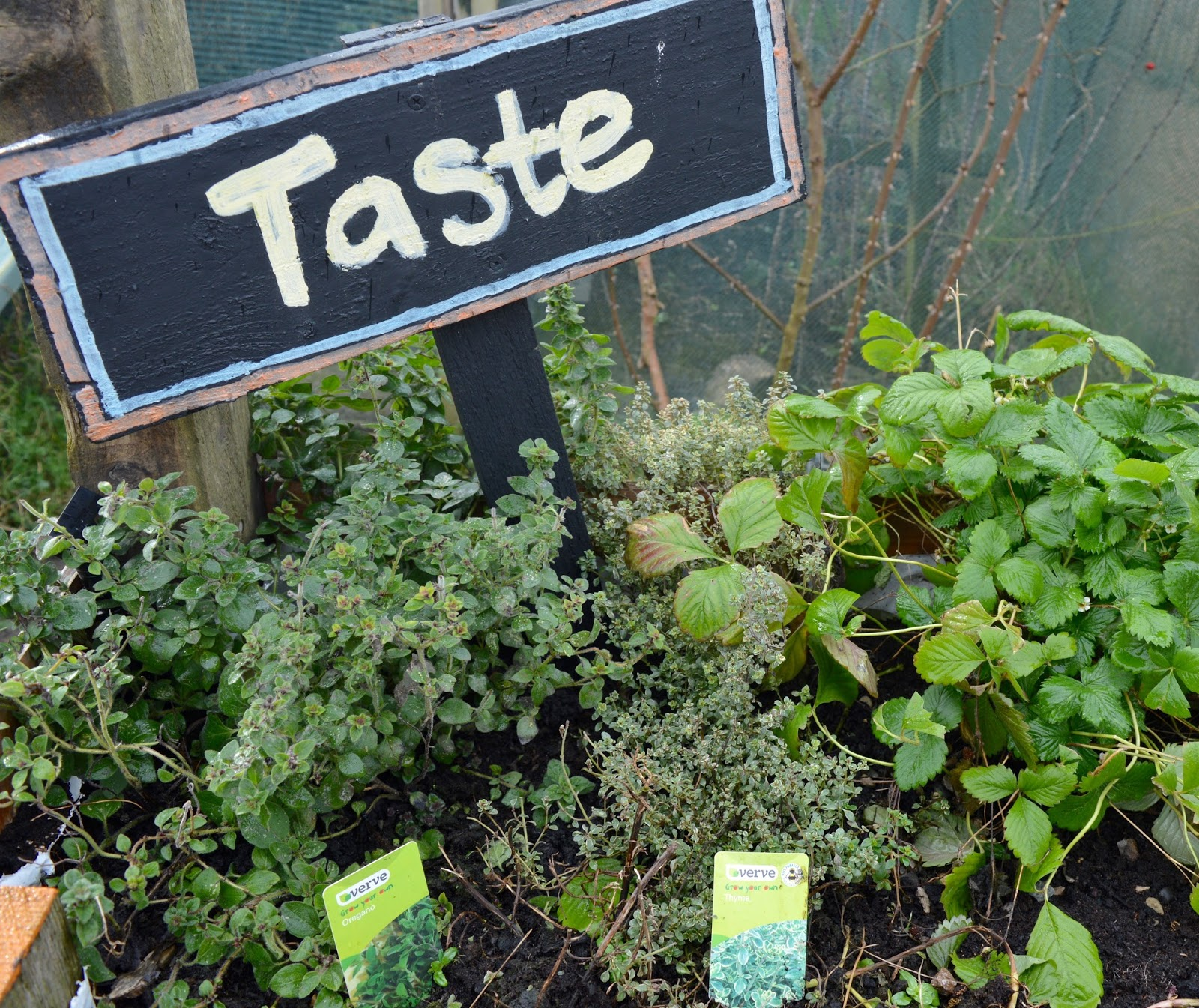 Ouseburn Farm Newcastle | A FREE Place to Take the Kids - sensory garden taste