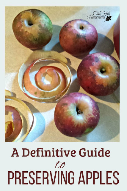 Have apples? You need this definitive guide to preserving apples so you can enjoy them year round!