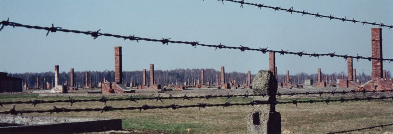 This Is How Auschwitz's Dying Inmates Struggled To Walk Towards Their Freedom