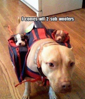Dog Humor ; I come with two sub woofers
