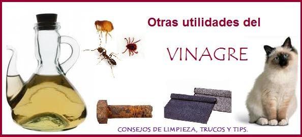 11 utilidades del vinagre en el hogar y otros productos for Articulos para limpieza del hogar