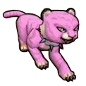 Goodbye Kitty - Pirate101 Hybrid Pet Guide