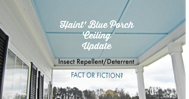 Update Haint Blue Porch Ceiling And