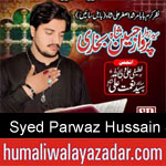 https://www.humaliwalyazadar.com/2018/09/syed-parwaz-hussain-shah-nohay-2019.html