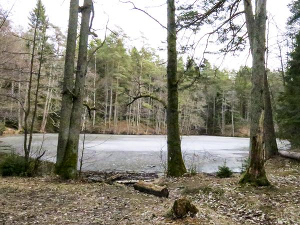 stora dammen