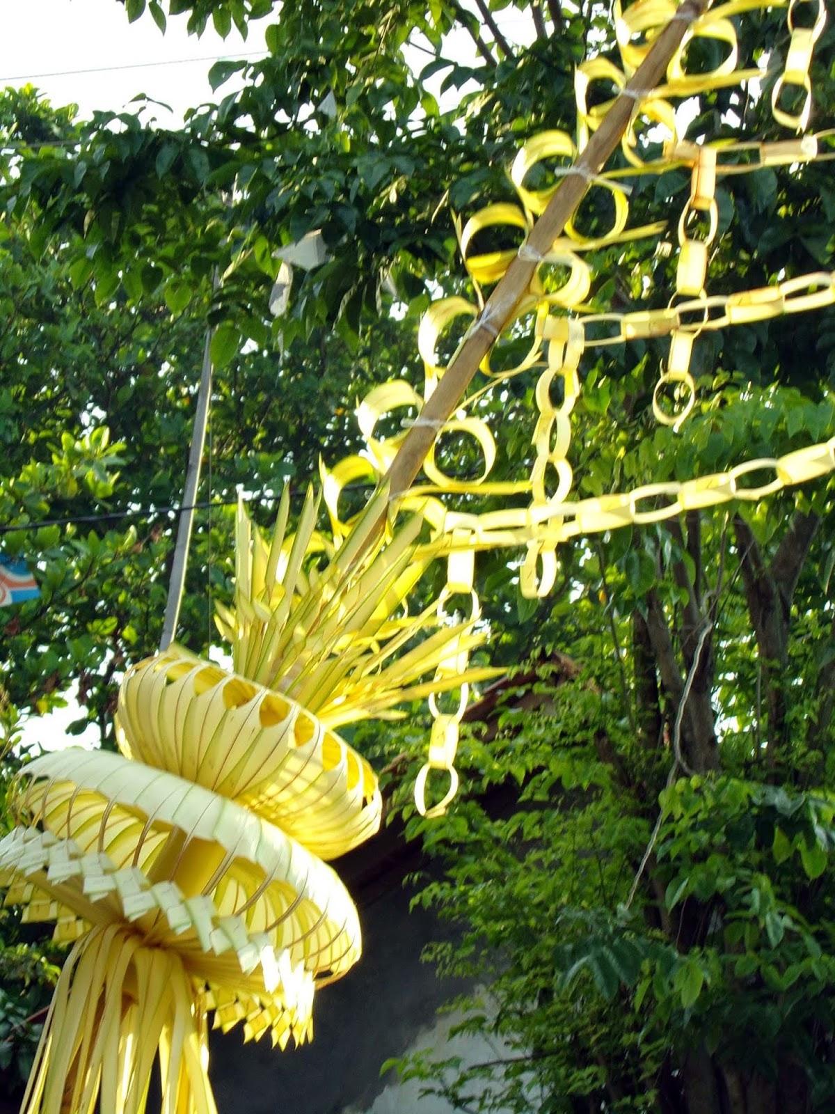 Hiasan Janur Kuning : hiasan, janur, kuning, MUASAL, HIASAN, JANUR, KUNING, ACARA, HAJATAN, Pangandarannews.com