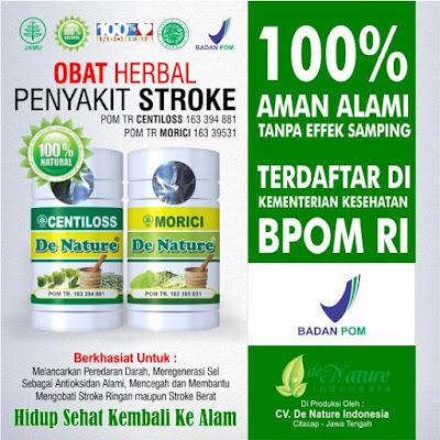 OBAT HERBAL STROKE