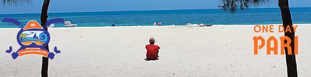 one day trip pulau pari pulau seribu selatan