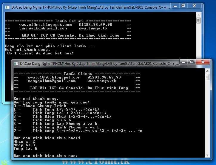 lập trình mạng TCP Console