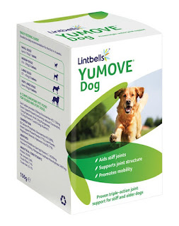 BEST PRICE DOG SUPPLEMENT Lintbells YuMOVE Dog Joint Supplement for Stiff and Older Dogs 120 Tablets – £17.95