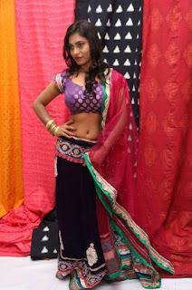 model priyanka agastin pics pochampally ikat art mela 2015 85aa3b2