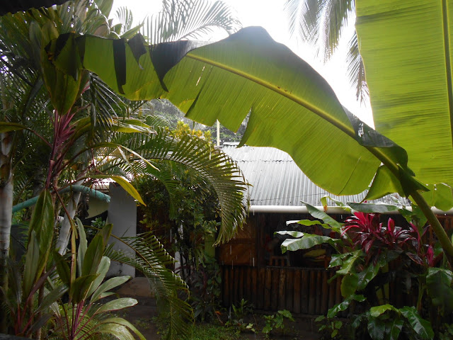 Costa Rica, Tortuguero, Getting to tortuguero, travelsandmore, travel blog, blogger, travel