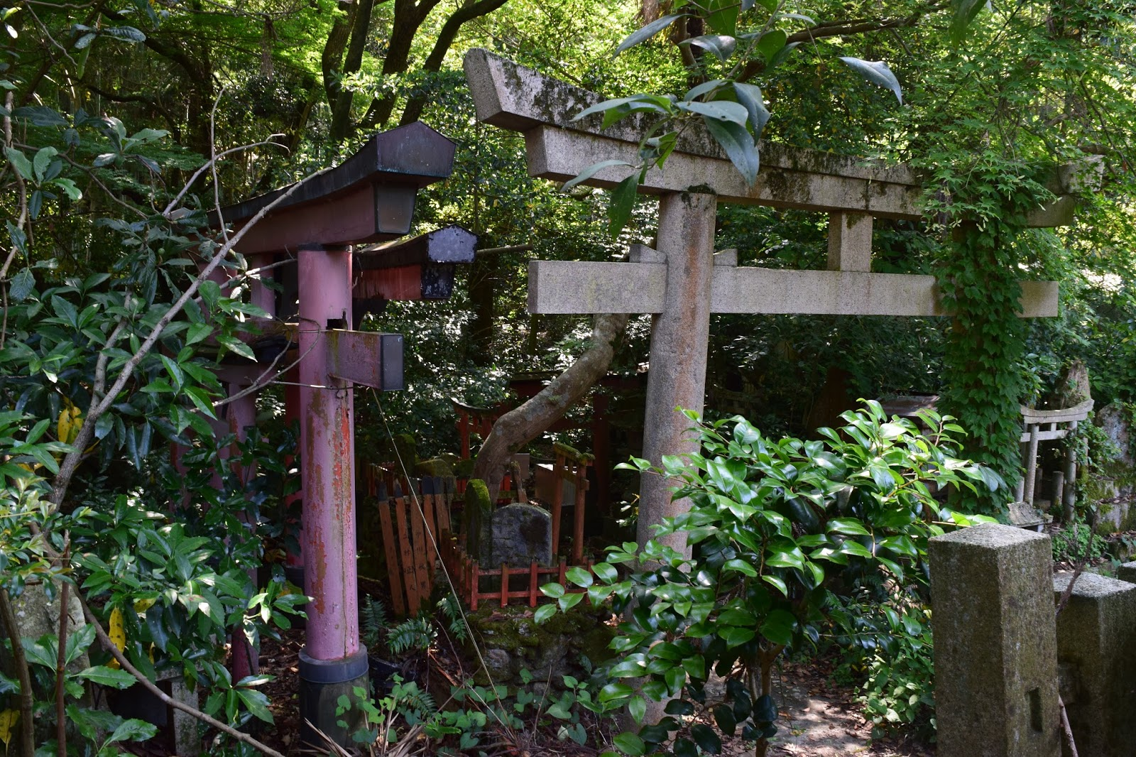 Abandoned Inari Shrine Kyoto