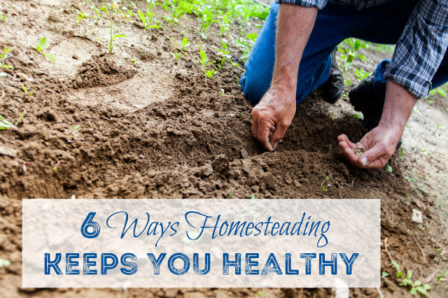 A homesteading lifestyle is a healthy lifestyle - no matter where you live.