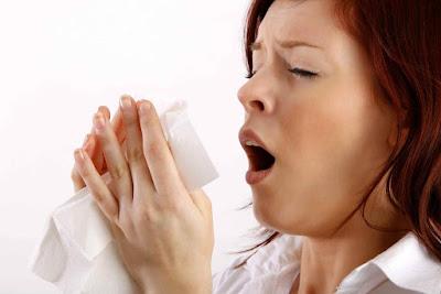 ¿Qué es una alergia?