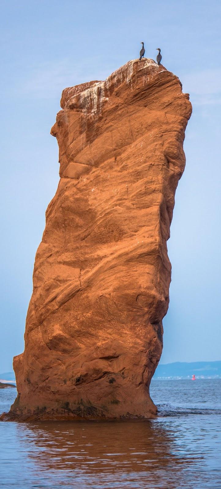 Two birds on a massive rock bolder.