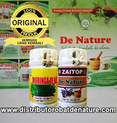 Paket Obat Maag Herbal