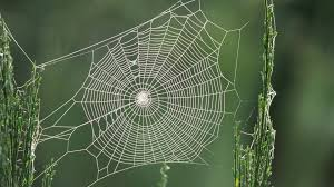 the spiritual cobwebs covering Christians