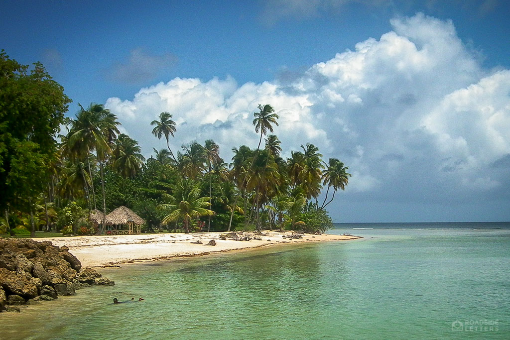 Coconut palms on the beach of Store Bay, Tobago