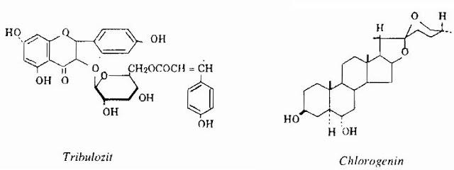 Thành phần hóa học Tật Lê (Bạch Tật Tê) - Tribulus terrestris - Nguyên liệu làm thuốc Chữa bệnh Mắt Tai Răng Họng