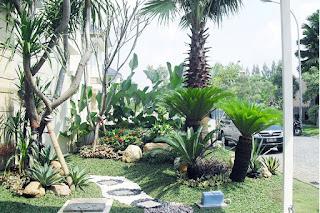 Galeri Taman - Tukang Taman Surabaya 85