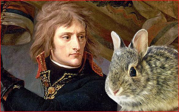 Napolyon'un en utanç verici yenilgisi tavşanlara karşıydı