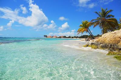 Plage de Guadeloupe avec cocotiers