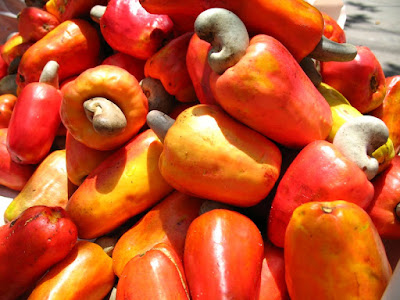 Health Benefits of The Cashew Fruit