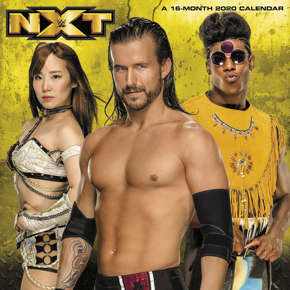 WWE NXT (19Feb-2020) 720p WEBRip 900MB