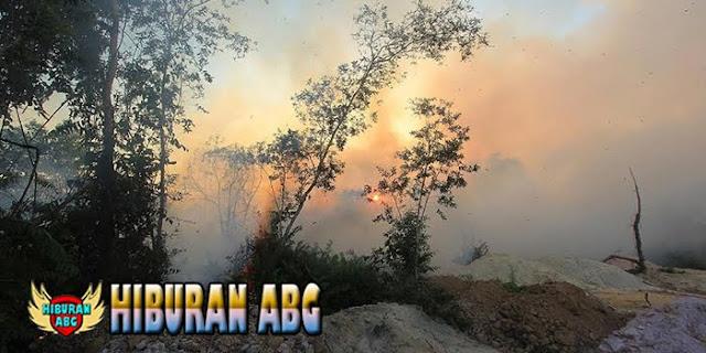 Kebakaran-Hutan-Lindung-di-Daerah-Sabang