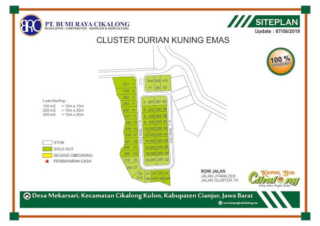 Cluster Durian Kuning Emas Kampung Buah Cikalong
