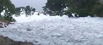Bengaluru, Shamed By Frothing Lake, Summons International Help