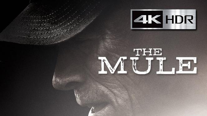 La Mula (2018) REMUX 4K UHD [HDR] Latino-Ingles
