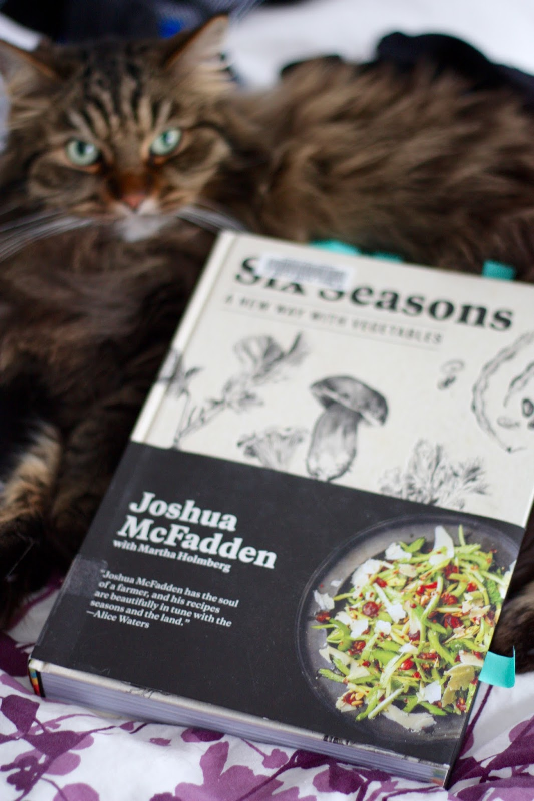 Ben and birdy slivered collards with brown butter pepperoncini i am also reading this book and it is so so deliciously good forumfinder Choice Image