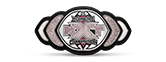 WWE nxt women's title design belt