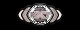 WWE nxt women's title design belt