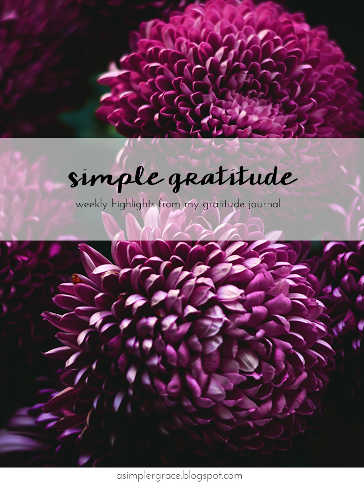 Sharing my #gratefulheart on the blog today! #gratitude #feelingthankful - Simple Gratitude | 59 - A Simpler Grace
