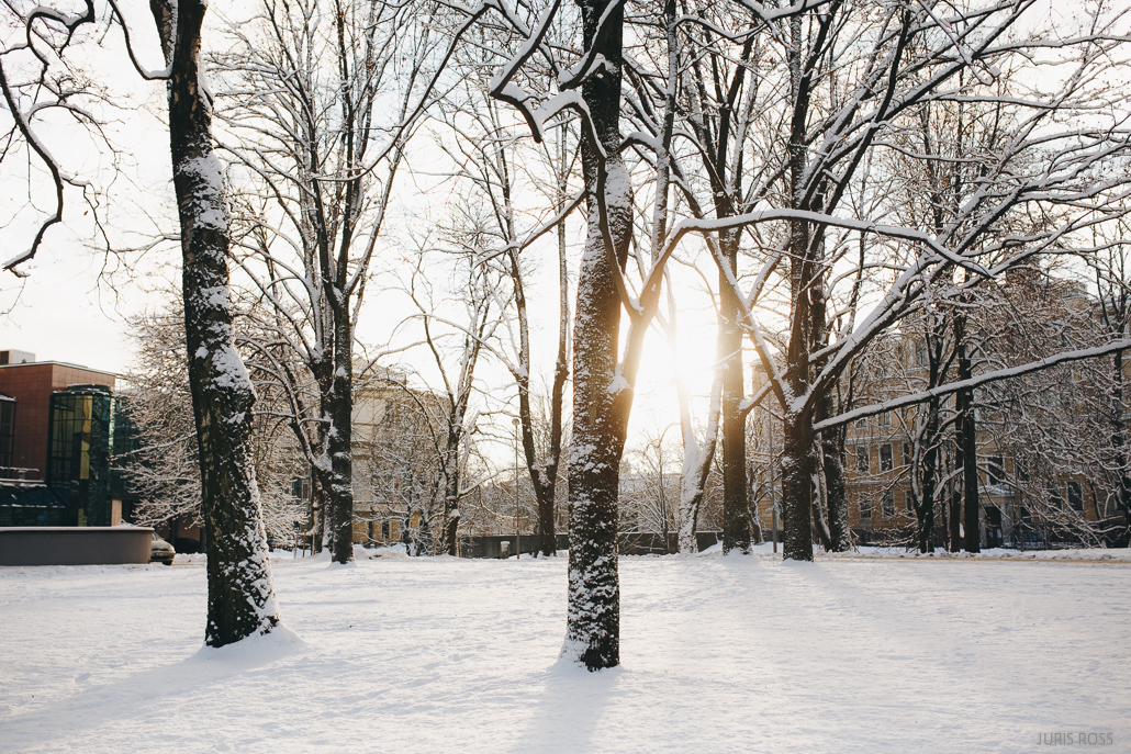 rīgas parki ziemā