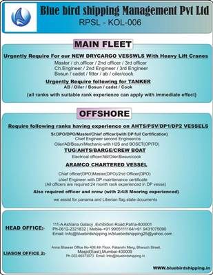 Recruit Indian Chief Cook For Cargo and Tanker Ships - Seaman jobs