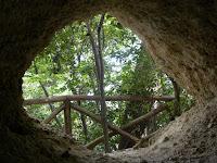 http://www.themarcheexperience.com/2015/10/il-bosco-del-cugnolo-e-la-grotta-degli.html