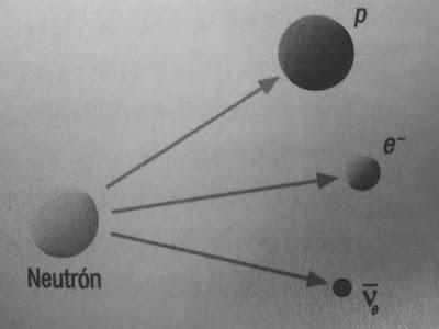 La fuerza nuclear debil es la responsable de la radiación beta