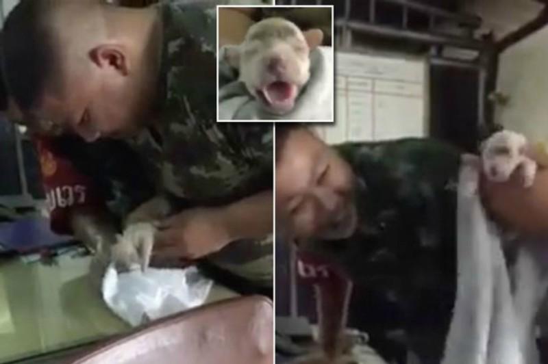 Ταϊλάνδη: Στρατιώτης δίνει τις πρώτες βοήθειες, και σώζει κουταβάκι από πνιγμό! (βίντεο)