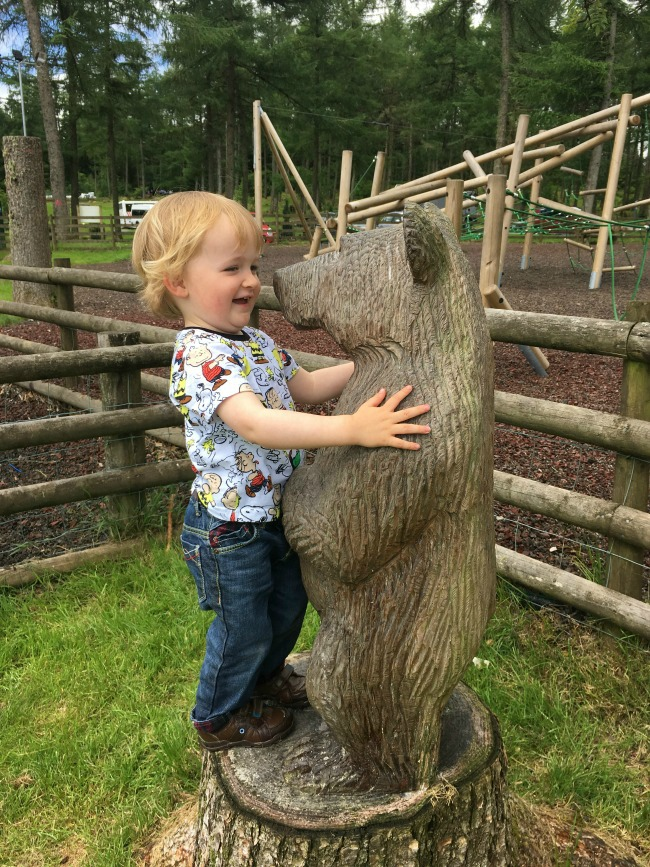 #MySundayPhoto-number-39-Garwnant-Bear-with-baby-Bear-last-year