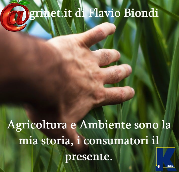 Agrinet.it di Flavio Biondi