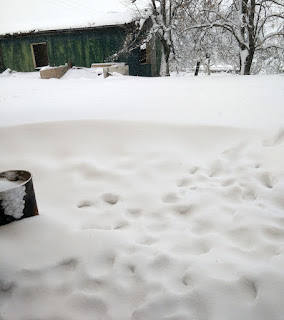 Snowdrift across the front of the kitchen